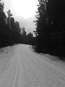 Skispor Lillomarka 4/3-2019.