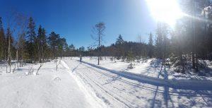 Skiløper på vei vekk fra fotografen.