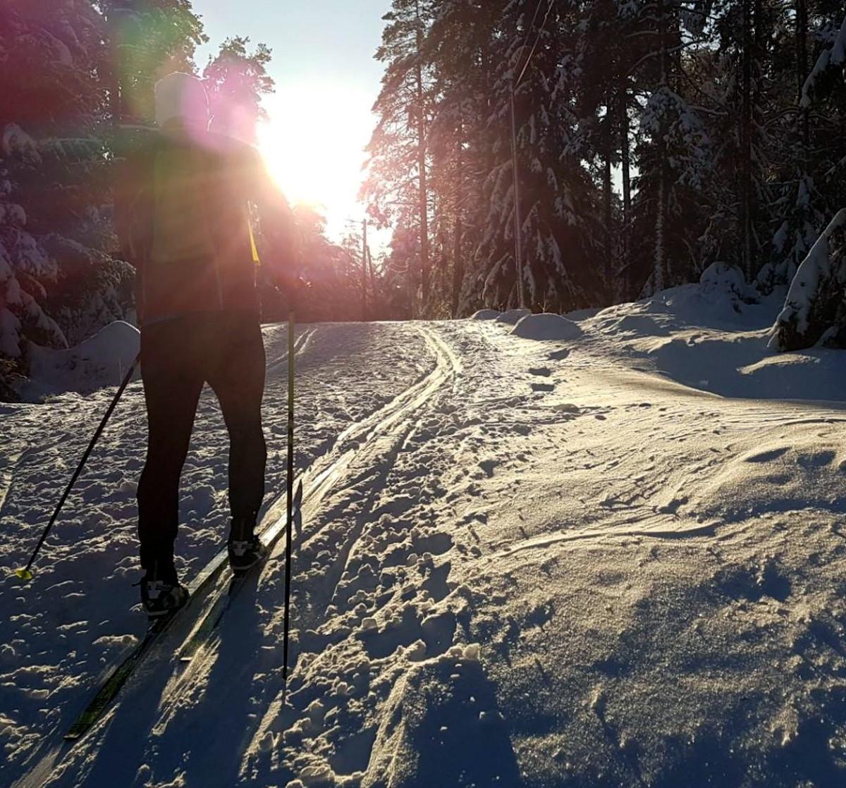 Skiløper mot sola mellom Romstjern og Stenbruvann.